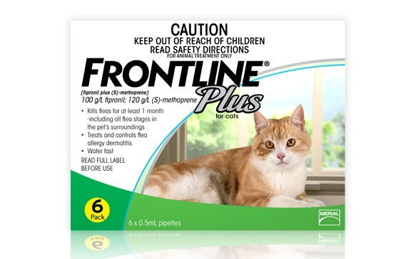 FRONTLINE PLUS for Cats 6 Month Pack