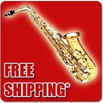 Professional Alto Saxophone Free Shipping Fast Shipping